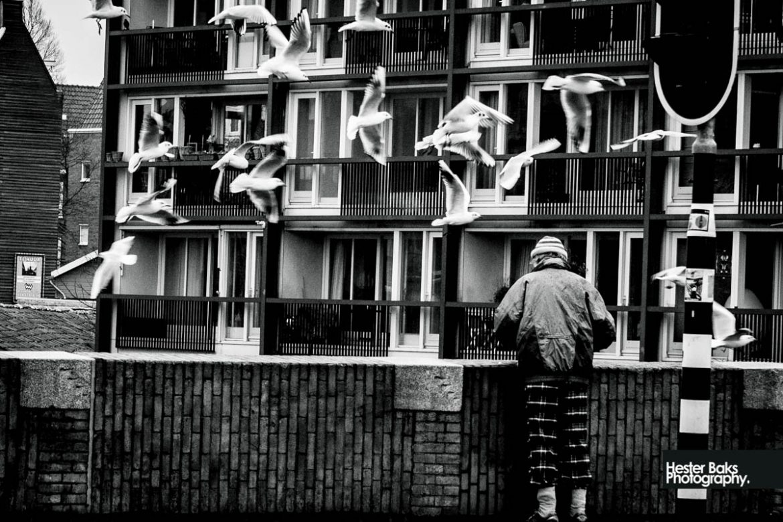 The Bird Whisperer #streetphotography #documentaryphotography #Amsterdam #blackandwhite #photography #photooftheday